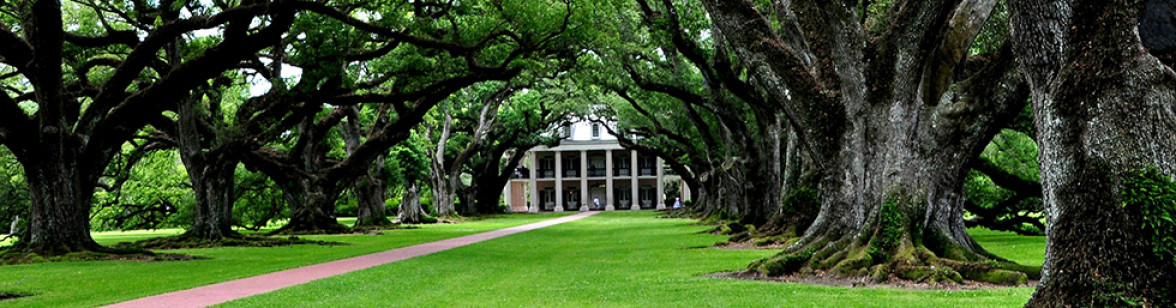 Louisiana_Oak_Alley_Plantation_1_Schaefer